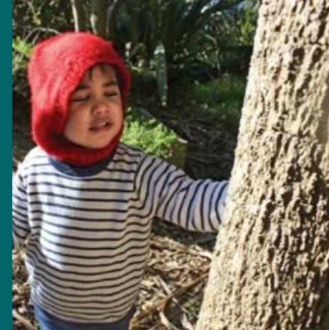 A young child with a red hood touches a tree.